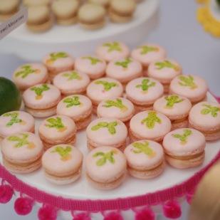 Watercolored Cactus Macarons